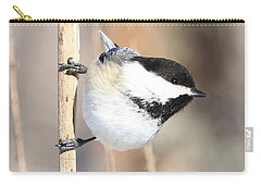 Black Capped Cutie Carry-all Pouch by Heather King