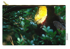 Chestnut-mandibled Toucan Carry-all Pouch