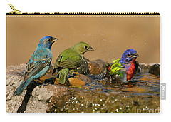 Colorful Bathtime Carry-all Pouch by Myrna Bradshaw