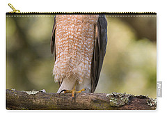 Carry-all Pouch featuring the photograph Cooper's Hawk by Doug Herr