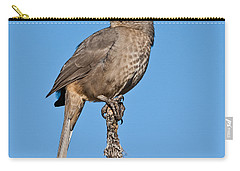 Curve-billed Thrasher Carry-all Pouch
