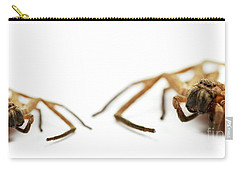 David And Goliath Daddy Longlegs Carry-all Pouch by Jorgo Photography - Wall Art Gallery