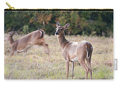 Carry-all Pouch featuring the photograph Deer At Paynes Prairie by Paul Rebmann