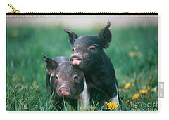 Domestic Piglets Carry-all Pouch by Alan Carey