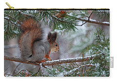 Eurasian Red Squirrel Carry-all Pouch by Jouko Lehto