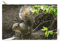 Carry-all Pouch featuring the photograph Grey Squirrel  by Phil Banks