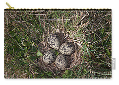 Lapwing Nest Carry-all Pouch