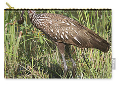 Carry-all Pouch featuring the photograph Limpkin In The Glades by Christiane Schulze Art And Photography