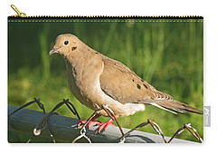 Morning Dove I Carry-all Pouch by Debbie Portwood