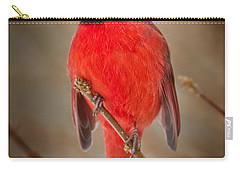 Northern Cardinal Carry-all Pouch by Bill Wakeley