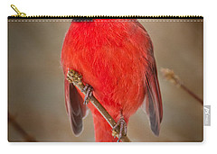 Cardinal Carry-all Pouches
