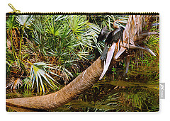 Oriental Darter Anhinga Melanogaster Carry-all Pouch