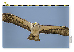 Carry-all Pouch featuring the photograph Osprey In Flight by Dale Powell