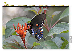 Carry-all Pouch featuring the photograph Pipevine Swallowtail II by Carol  Bradley