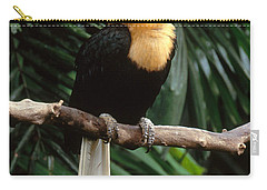 Red-knobbed Hornbill Carry-all Pouch