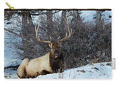 Carry-all Pouch featuring the photograph Rocky Mountain Elk by Michael Chatt