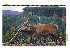 Carry-all Pouch featuring the photograph Rutting Red Deer Stag  by Phil Banks