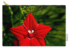 Scarlet Morning Glory Carry-all Pouch by Ramabhadran Thirupattur