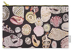 Shells By C . 1.3 Carry-all Pouch