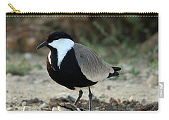Spur-winged Plover And Chick Carry-all Pouch