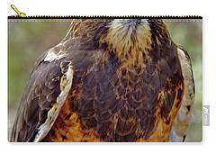 Swainson's Hawk Carry-all Pouch by Ed  Riche