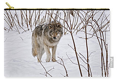 Carry-all Pouch featuring the photograph Timber Wolf by Wolves Only