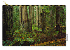 Trees In A Forest, Hoh Rainforest Carry-all Pouch