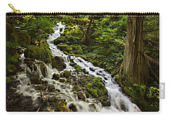 Wahkeena Creek Carry-all Pouch by Mary Jo Allen