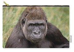 Western Lowland Gorilla Young Male Carry-all Pouch by Gerry Ellis