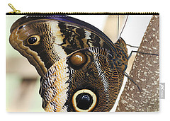 Yellow-edged Giant Owl Butterfly #4 Carry-all Pouch by Judy Whitton