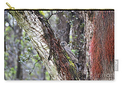 Carry-all Pouch featuring the photograph Young 'io Hawaiian Hawk by Lehua Pekelo-Stearns