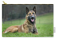 101130p018 Carry-all Pouch by Arterra Picture Library