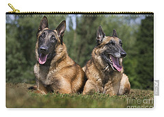 110506p116 Carry-all Pouch by Arterra Picture Library