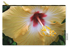 Hibiscus Carry-all Pouch by Ron Davidson