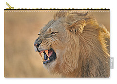 120118p081 Carry-all Pouch by Arterra Picture Library