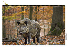 Carry-all Pouch featuring the photograph 121213p283 by Arterra Picture Library