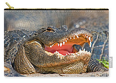 American Alligator Carry-all Pouch by Millard H. Sharp