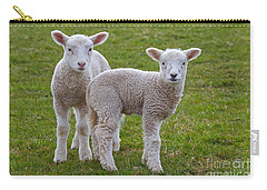 Carry-all Pouch featuring the photograph 130201p091 by Arterra Picture Library