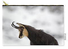 130201p229 Carry-all Pouch by Arterra Picture Library
