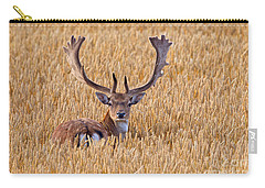 Carry-all Pouch featuring the photograph 130201p293 by Arterra Picture Library