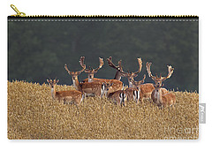 Carry-all Pouch featuring the photograph 130201p298 by Arterra Picture Library