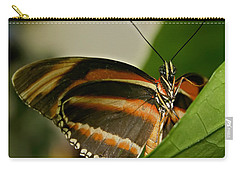 Carry-all Pouch featuring the photograph Butterfly by Olga Hamilton