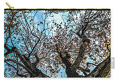 1st Tree Carry-all Pouch by Gandz Photography