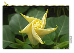A Star Is Born 001 Carry-all Pouch