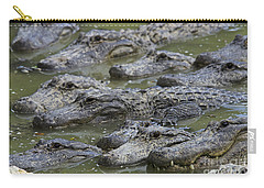 American Alligator Carry-all Pouch by Mark Newman