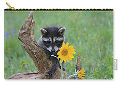 Baby Raccoon Carry-all Pouch by M. Watson