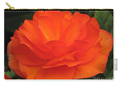 Begonia Named Nonstop Apricot Carry-all Pouch by J McCombie