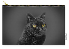 Black Cat Carry-all Pouch by Peter Lakomy