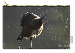Boat Tailed Grackle Carry-all Pouch by Meg Rousher