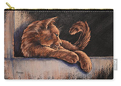 Carry-all Pouch featuring the painting Catching The Last Rays by Cynthia House